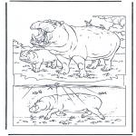 Раскраски с животными - Бегемот 1
