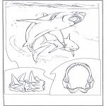 Раскраски с животными - Белая акула-людоед