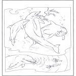 Раскраски с животными - Дельфины 2