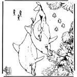 Раскраски с животными - Дельфины 5