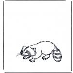 Раскраски с животными - Енот