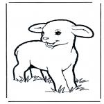 Раскраски с животными - Ягненок 1