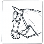 Раскраски с животными - Голова лошади 2
