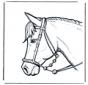 Голова лошади 2