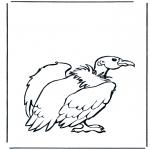 Раскраски с животными - Гриф