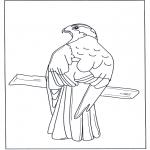 Раскраски с животными - Хищная птица на ветке