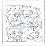 Раскраски с животными - Коала