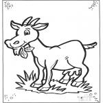 Раскраски с животными - Козел 2
