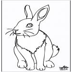 Раскраски с животными - Кролик 4