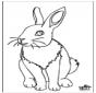 Кролик 4