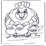 Раскраски с животными - Курица с цыплятами