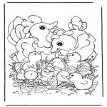 Темы - Куры с яйцами