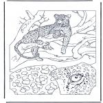 Раскраски с животными - Леопард 1