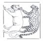 Лев и леопард