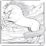 Раскраски с животными - Лошадь 5