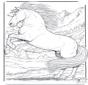 Лошадь 5
