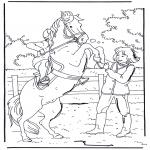 Раскраски с животными - Лошадь бьет копытом