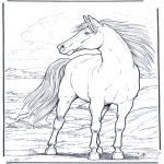 Раскраски с животными - Лошадь на ветру