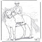 Раскраски с животными - Лошадь с дамой