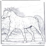 Раскраски с животными - Лошадь в галлопе