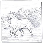 Раскраски с животными - Лошадь в воде