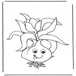 Разнообразные - Луковица цветка