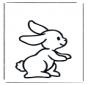 Маленький кролик 1