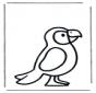 Маленький попугай