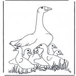 Раскраски с животными - Матушка Гусыня