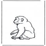Раскраски с животными - Обезьяна 2