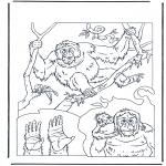 Раскраски с животными - Орангутанг