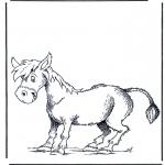 Раскраски с животными - Осел