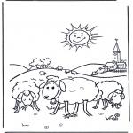 Раскраски с животными - Овцы на солнце