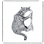 Раскраски с животными - Пантера
