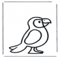 Попугай 1