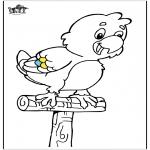 Раскраски с животными - Попугай 5