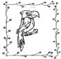Попугай на жердочке