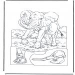 Раскраски с животными - Слон 1