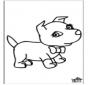 Собака 6