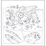 Раскраски с животными - Сова на охоте