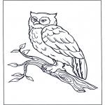 Раскраски с животными - Сова на ветке