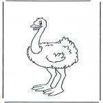Раскраски с животными - Страус 1