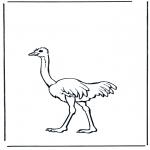Раскраски с животными - Страус 2