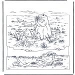 Раскраски с животными - Сурок