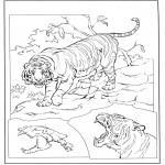 Раскраски с животными - Тигр 3