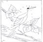 Точка за точкой - Птицы