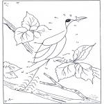 Рукоделие - Точка за точкой - Птицы