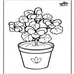 Разнообразные - цветы 6