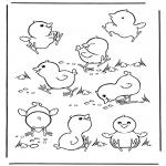 Раскраски с животными - Цыплята