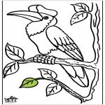 Раскраски с животными - Тукановые